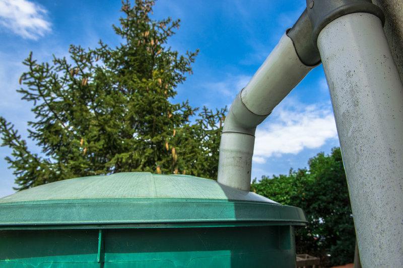 Regenwasser Sammeln Clevere Gartenbewasserung Schont Den Geldbeutel