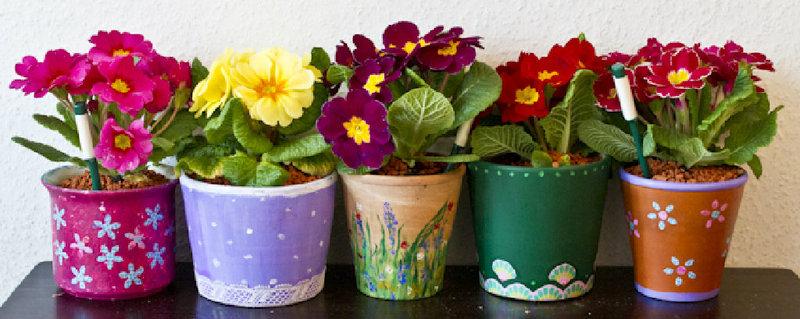 Pflanztöpfe kreativ gestalten | www.bauwohnwelt.at